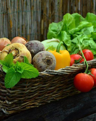 marché régulier et marchés alimentaires