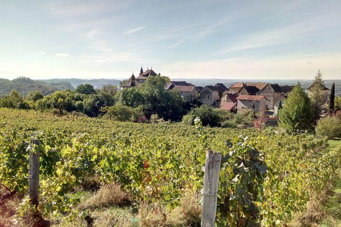 Vignoble du domaine et vue sur le village