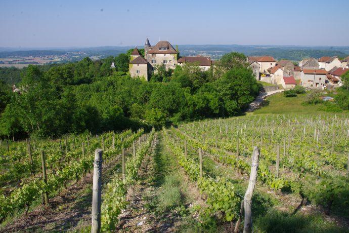 vue depuis les vignes de Montagnieu